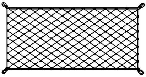 Small  Elastic  Securing  Net