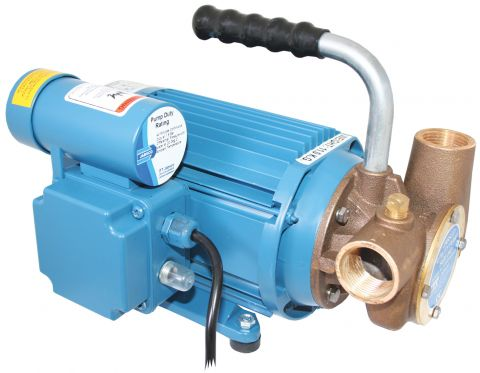 53040  Series  240  Volt  AC  Utility  Pump
